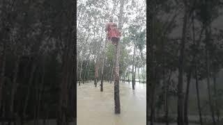 ข่าวฝนฟ้าอากาศ รายงานโดย เปรตสุดา