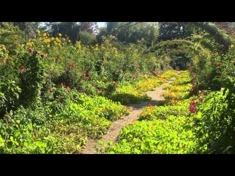 Part of Monet's gardens in Giverny, France.