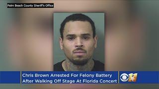 Singer Chris Brown Arrested For Felony Assault In Florida