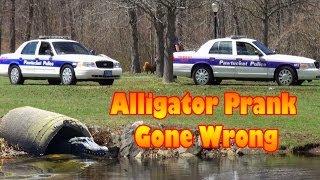 Alligator Prank Gone Wrong
