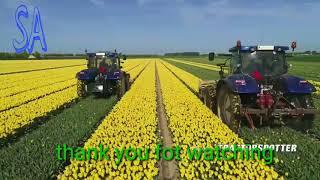 Topping Tulips | John Deere 6R on Soucy Tracks | JVS triple topper |