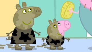 Peppa Pig En Español | Charcos de lodo Ep.1 | Pepa la Cerdita | Dibujos Animados