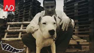 Lyrical Son -Tabullarasa (Official Video)