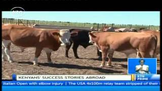 Daring Abroad: Willy Kathurima - Kenyan beef farmer in Botswana