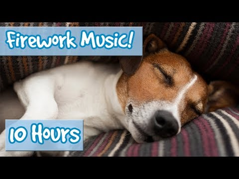 Xxx Mp4 Relaxing Music For Dogs To Calm From Fireworks Loud Noises Includes Desensitising Sound Effects 3gp Sex