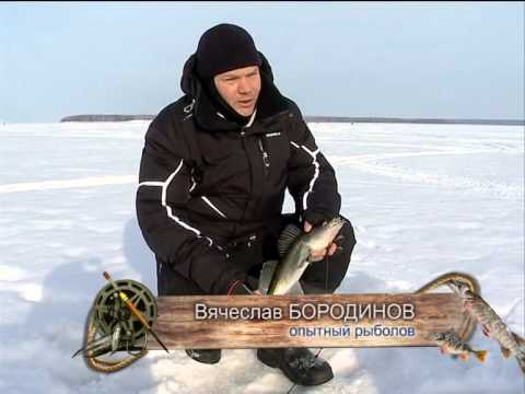 что такое тюлька у рыбаков