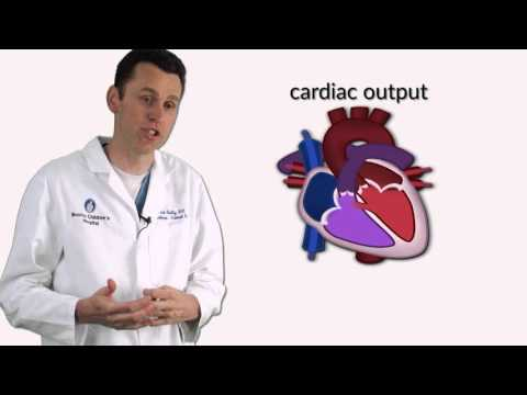 Xxx Mp4 Quot Ventricular Septal Defects Quot By Dr David Bailly For OPENPediatrics 3gp Sex
