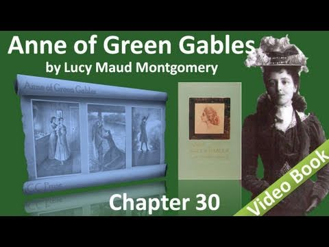 Chapter 30 - Anne of Green Gables by Lucy Maud Montgomery - The Queens Class Is Organized