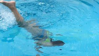 Havuzun veya Denizin Dibine Dalma Teknikleri