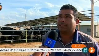Iran made Dairy farming complex, Sarbisheh county مجتمع پرورش گاو شيرده شهرستان سربيشه ايران