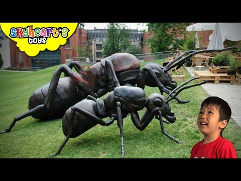 Toddler hunts for GIANT INSECTS Ant Bee Scorpion Cockroach Spider Playtime Kids toys
