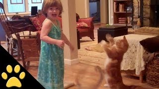 Cats Vs. Kids - Who Is Cuter? - Compilation