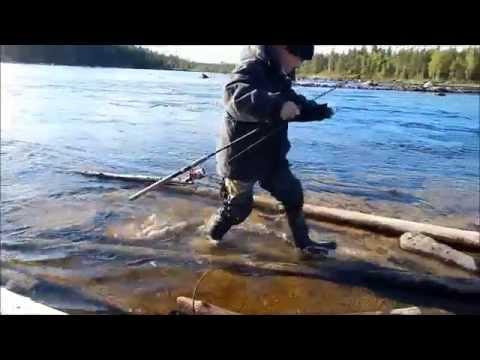с какого числа можно ловить рыбу на ладожском озере