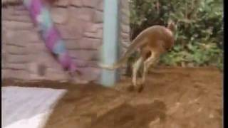 Zoboomafoo: Grow Zoboo Grow (HQ) Part 2/2