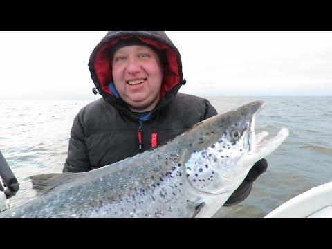 видео троллинг лосося