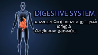 Digestive system in tamil(செரிமான மண்டலம் அதன் அமைப்புகள் )