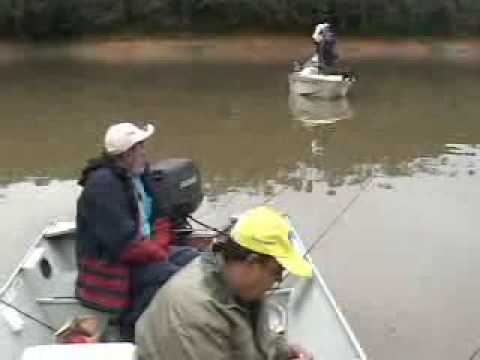 Pesca Dinâmica Pescaria de Jundiás e Bagres em represa PR parte 1