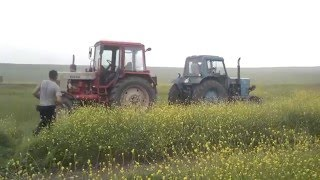 mtz 80 vs mtz 82 by ILINIUS