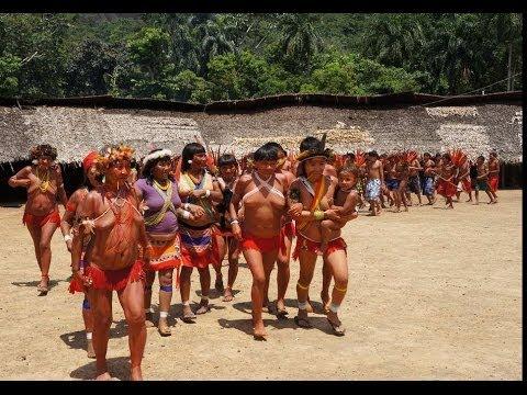 Xxx Mp4 TheYanomamis Tribe Los Yanomamis Del Amazonas 3gp Sex