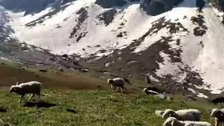 Chandernahan valley Rohru , Himachal Pradesh