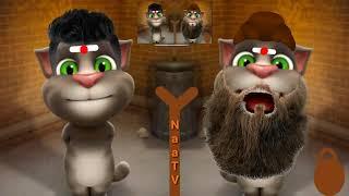 Funny videos by mr tom vs ms tom