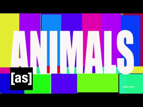 Xxx Mp4 Animals Off The Air Adult Swim 3gp Sex