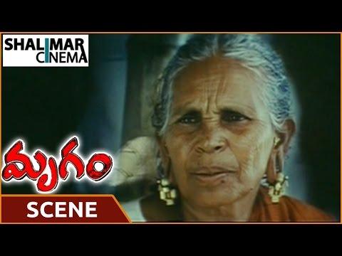 Xxx Mp4 Mrugam Movie Aadhi Pinisetty Mother Says Flashblack To Padmapriya Aadhi Shalimarcinema 3gp Sex
