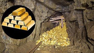 They Forgot These Gold Mines!