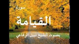 سورة القيامة بصوت الشيخ / نبيل الرفاعي 75