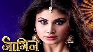 Nagin: Shivanya's truth revealed in Nagin?