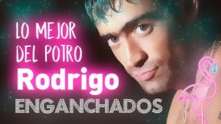 Lo Mejor del Potro Rodrigo Bueno - Grandes Exitos Temas Enganchados