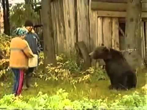 Xxx Mp4 Feed The Bear From 3gp Sex