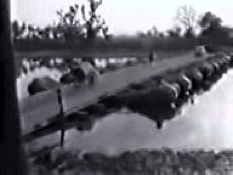 Xxx Mp4 Footage From 1971 Bangladesh Liberation War 3gp 3gp Sex