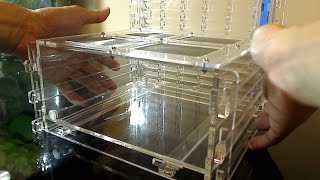 Ant Farm - Omni Nest Vertical Unboxing & Instructional Video