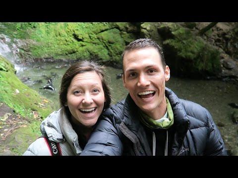 ADORABLE BABY SEALS Ohau Waterfall Kaikoura New Zealand
