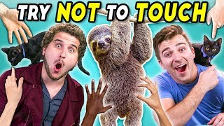 Try Not To Touch Challenge (ft. Sid The Sloth!)