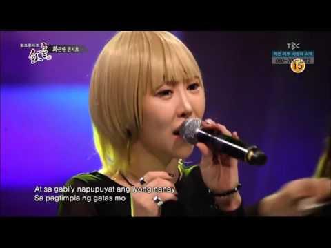Korean band sing ANAK by Freddie Aguilar