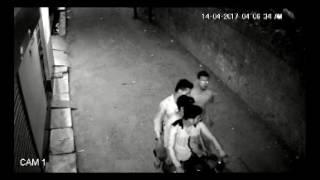 Cow chori cought in CCTV camera