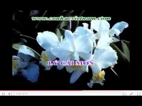 karaoke tanco NHANH LAN RUNG ca voi 545.wmv