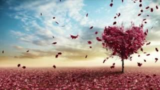Tu Mera hai Sanam | Lyrical Video |