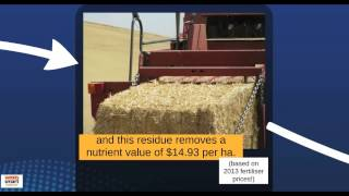 Bale Direct Nutrient Implications