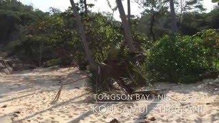 Koh Samui - nude beach, Thailand.