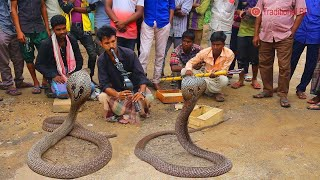 amazing street performers or busker |  cobra flute music played by snake charmer