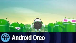 Google Unveils Android Oreo Statue