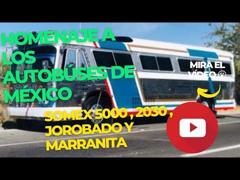 AUTOBUSES DE MEXICO HOMENAJE AL SOMEX PESCUESON JOROBADO MARRANITA Y 5000 CONOCIDOS COMUN MENTE