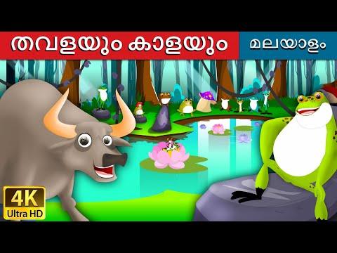Xxx Mp4 തവളയും കാളയ The Frog And The Ox In Malayalam 4K UHD Malayalam Story Malayalam Fairy Tales 3gp Sex