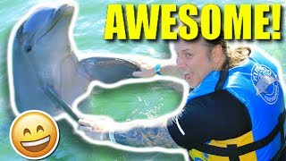 WAS THIS A MISTAKE?? **DOLPHINS** Brian Barczyk