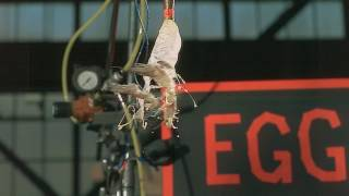 Mythbusters 14x03 Cooking Chaos Part 06.mp4