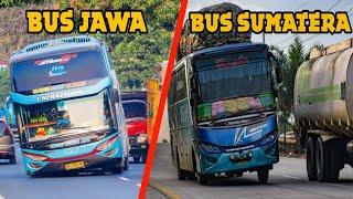 6 Perbedaan BUS JAWA & BUS SUMATRA