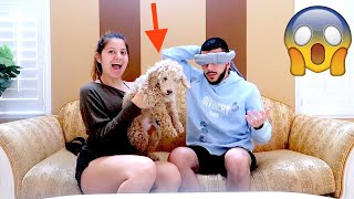 REUNITED WITH MY DOG! SHE SURPRISED ME!!!